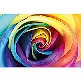 GREAT ART® Fototapete – Regenbogen Rose – Wandbild Dekoration Blumen Liebe Pflanzen Romantik Natur Flowers Regenbogenfarben Rosenblüten Knospe Foto-Tapete Wandtapete Fotoposter (210 x 140 cm)