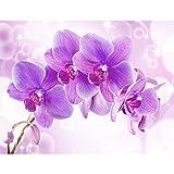 Runa Art Fototapete Orchidee Blumen Modern Vlies Wohnzimmer Schlafzimmer Flur - made in Germany - Lila 9012010b