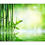 murando Fototapete Spa 400x280 cm Vlies Tapeten Wandtapete XXL Moderne Wanddeko Design Wand Dekoration Wohnzimmer Schlafzimmer Büro Flur Bambus Natur grün b-B-0164-a-a