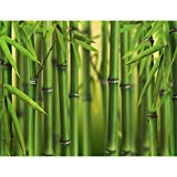 Runa Art Fototapete Bambus Modern Vlies Wohnzimmer Schlafzimmer Flur - made in Germany - Grün 9097010a