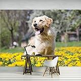 DekoShop Fototapete Hund Wandtapete - P4 (254cm. x 184cm.) Moderne Wanddeko Design Tapete AMD11376P4 Tiere/Fauna,Natur, Wald, Blumen Wohnzimmer Schlafzimmer