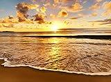 wandmotiv24 Fototapete Sonnenuntergang Größe: 350 x 260 cm Wandbild, Motivtapete, Vlietapete KTk409