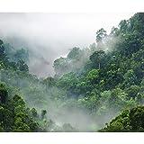 decomonkey Fototapete Wald Natur 400x280 cm XL Tapete Wandbild Bild Fototapeten Tapeten Wandtapete Landschaft