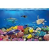 GREAT ART Fototapete – Aquarium – Wandbild Dekoration Farbenfrohe Unterwasserwelt Meeresbewohner Ozean Fische Delphin Korallen-Riff Clownfisch - Foto-Tapete Wandtapete Fotoposter (210x140 cm)