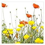 Vliestapete - Blumentapete Duo of Flowers Teil 2 Fototapete Quadrat Vlies Tapete Wandtapete Wandbild Foto 3D Fototapete, Größe HxB: 192cm x 192cm