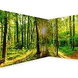 murando Eckfototapete Wald 550x250 cm Vlies Tapeten Wandtapete XXL Moderne Wanddeko Design Wand Dekoration Wohnzimmer Schlafzimmer Büro Flur Landschaft Natur grün Baum b-B-0383-a-a