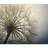 murando Fototapete Pusteblumen 350x256 cm Vlies Tapeten Wandtapete XXL Moderne Wanddeko Design Wand Dekoration Wohnzimmer Schlafzimmer Büro Flur Natur Landschaft Blumen grau beige b-B-0059-a-d