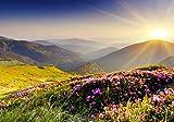 wandmotiv24 Fototapete Berge Berglandschaft Hügel, L 300 x 210 cm - 6 Teile, Fototapeten, Wandbild, Motivtapeten, Vlies-Tapeten, Gras, Wiese, Natur M0511