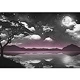 Fototapeten Natur Himmel Mond 352 x 250 cm - Vlies Wand Tapete Wohnzimmer Schlafzimmer Büro Flur Dekoration Wandbilder XXL Moderne Wanddeko - 100% MADE IN GERMANY - 9341011c