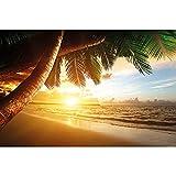 GREAT ART® Fototapete – Sonnenuntergang am Meer – Wandbild Dekoration Karibik Palm Beach Paradies Strand Sonne Urlaub Reisen Natur Insel Wandtapete Fotoposter Wanddeko (336 x 236 cm)