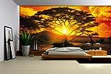 Vlies Fototapete Fototapeten Wandbild Bilder Tapete Tapeten AFRIKA AFRICA 400VE