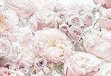 Komar Fototapete Spring Tapete, Wanddekoration, Rosen, Schlafzimmern, Romantik, Blumenmotiv-8-976, Bunt, 368 x 254 cm, 8 Teile