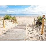Runa Art Fototapete Strand und Meer Modern Vlies Wohnzimmer Schlafzimmer Flur - made in Germany - Beige Blau 9007010b