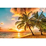 GREAT ART Fototapete – Barbados – Wandbild Dekoration Urlaub Sonnenuntergang Meer Karibik Strand Palm Beach Sommer Insel Sunset Traumurlaub Foto-Tapete Wandtapete Fotoposter (210 x 140 cm)