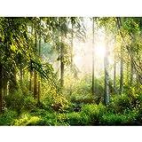 Fototapeten 396 x 280 cm Wald Sonne | Vlies Wanddekoration Wohnzimmer Schlafzimmer | Deutsche Manufaktur | Gelb Grün 9176012a