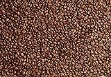wandmotiv24 Fototapete braune Kaffeebohne geröstet XXL 400 x 280 cm - 8 Teile Fototapeten, Wandbild, Motivtapeten, Vlies-Tapeten Coffee M0843