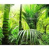 decomonkey | Fototapete Natur Exotik 400x280 cm XXL | Tapete | Wandbild | Bild | Fototapeten | Tapeten | Wandtapete | Wanddeko | Wandtapeten | Palme Bambus Wald Wildnis Grün