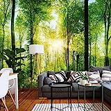 murimage Fototapete Wald 3D 366 x 254 cm inklusive Kleister Tapete Bäume Wohnzimmer Küche Schlafzimmer