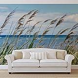 Strand See Sand Natur - Forwall - Fototapete - Tapete - Fotomural - Mural Wandbild - (1976WM) - XXL - 312cm x 219cm - VLIES (EasyInstall) - 3 Pieces