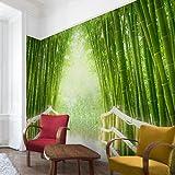 Apalis Bambus Tapete Vliestapete Bamboo Way Fototapete Breit | Vlies Tapete Wandtapete Wandbild Foto 3D Fototapete für Schlafzimmer Wohnzimmer Küche | grün, 94887