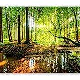 murando Fototapete Wald 400x280 cm Vlies Tapeten Wandtapete XXL Moderne Wanddeko Design Wand Dekoration Wohnzimmer Schlafzimmer Büro Flur Natur Baum grün Landschaft Sonne c-B-0241-a-a