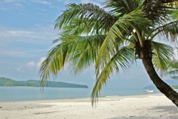 fototapete palmen strand sonnenuntergang meer. Black Bedroom Furniture Sets. Home Design Ideas